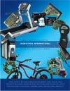 SIgmaTron 2008 Annual Report